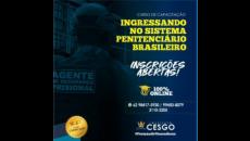 Ingressando no Sistema Penitenciário Brasileiro